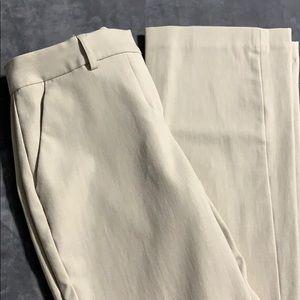 Express dress pant